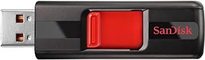 SanDisk Cruzer 256GB USB 2.0 Flash Drive (SDCZ36 ... - Amazon.com