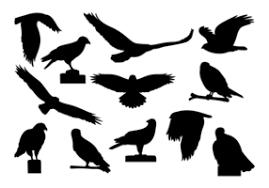 <b>Hawk Free</b> Vector Art - (8,009 <b>Free</b> Downloads)