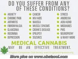 Funny Weed Pictures and Sayings | Medical Cannabis | Funny ... via Relatably.com