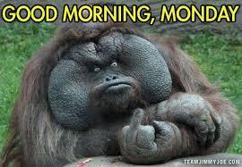 Good Morning - Monday Meme via Relatably.com