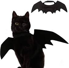 Ehdching Cat Costume Halloween Pet Bat Wings Cat ... - Amazon.com
