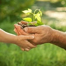 Développement durable: Pour des stratégies d'investissement à long terme