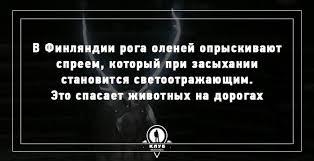 Забавное | Записи в рубрике Забавное | Дневник ВалИв ...