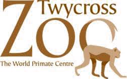 Image result for twycross zoo