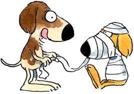 Bildergebnis für Erste hilfe am Hund Bilder