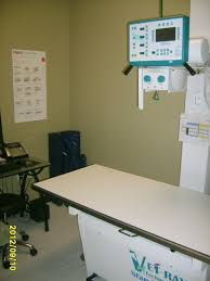 best care animal hospital veterinarian in houston tx usa virtual office tour best virtual office
