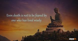 14 Enlightening Quotes By Buddha That Will Change The Way You Look ... via Relatably.com