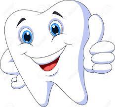 Znalezione obrazy dla zapytania teeth clipart