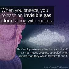 Sneezing Releases A Cloud Of Buoyant Gas (and Snot) - ... via Relatably.com