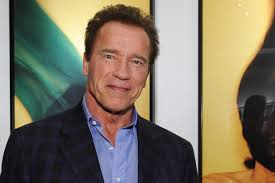 Image result for arnold schwarzenegger 2015