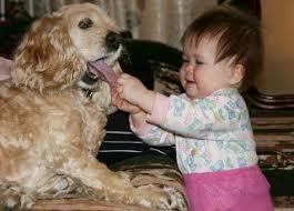 Výsledok vyhľadávania obrázkov pre dopyt beautiful dog and baby