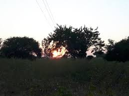 stephanie klotz on blessed w great stories and amazing stephanie klotz on blessed w great stories and amazing sunsets over the organic cotton fields of madhya pradesh candafund catherineraynor