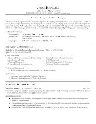 data analyst resume sample info it analyst resume sample 11 business summary easy data