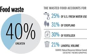 Image result for food waste graphic