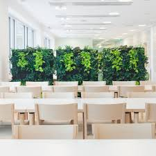 1000 images about office spaces on pinterest office designs offices and whiteboard amazing office plants