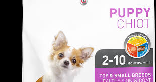 Healthy Skin & Coat Toy & Small Breeds - Puppy - 1st Choice Russia