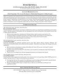 resume examples  examples of resume summaries resume examples for        resume examples  examples of resume summaries for account representative with competitive sellng and technical skills