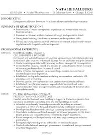 resume  senior executive   financial services technologyexample resume senior executive financial services technology