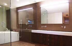 masterbath_1jpg basic bathroom strip