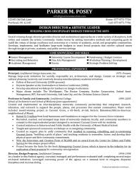 director resume design director resume