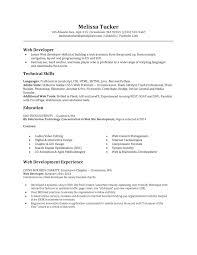 sample resume programmer developer cipanewsletter entry level it programmer resume for computer entry web developer