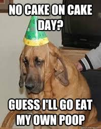 "Sad Birthday Dog"" Meme Selection | JapeMonster via Relatably.com"