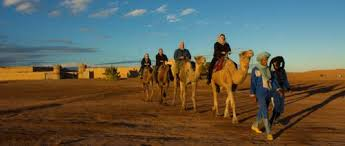 Perfect Camels Garden Hotel Information On Decorating