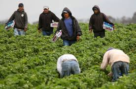 Resultado de imagen para mexicanos en eeuu