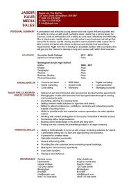 entry level resume templates  CV  jobs  sample  examples  free     Entry level media sales resume