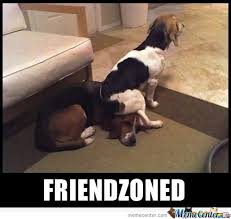 Friend Zone Memes. Best Collection of Funny Friend Zone Pictures via Relatably.com
