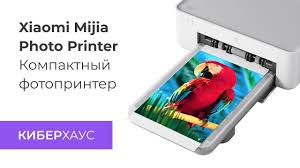 Фотопринтер <b>Xiaomi Mijia Photo Printer</b> - YouTube