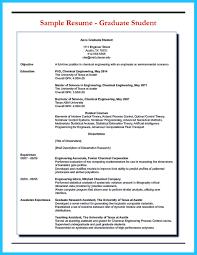 resume database developer cipanewsletter how professional database developer resume must be written how