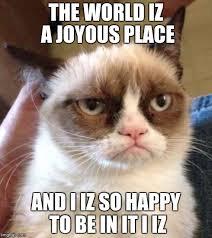 Grumpy Cat Reverse Latest Memes - Imgflip via Relatably.com