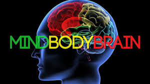 Image result for Mind-Body Wellness clip art