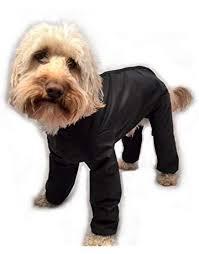 Raincoats for dogs - Amazon.co.uk
