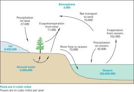 usgs ground water in the great lakes basin   the case of    schematic section of amount of water in parts of hydrologic cycle