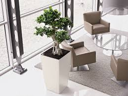 1000 images about project expeditors on pinterest conference room reception areas and waiting area add bonsai office interior