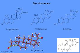 SEX STEROIDS