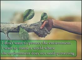 essay writing on environment day  world environment day
