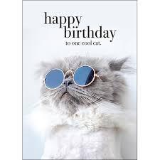 M75 - Happy birthday to one cool <b>cat animal</b> greeting <b>card</b> ...