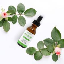 hyaluronic acid serum green tea essence oil control moisturizing face cream shrink pores with gift collagen eye
