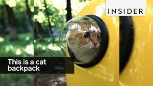 <b>Cat Backpack</b> - YouTube