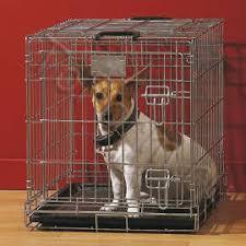 Клетки для собак | Купить с доставкой по России