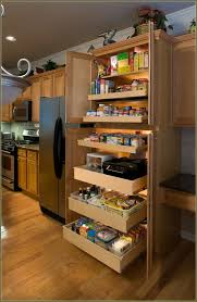 Kitchen Pantry Cabinet Ikea Stand Alone Pantry Cabinet Ikea Home Design Ideas
