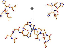to Tropomyosin Receptor Kinase A in Complex with Its Cognate ...