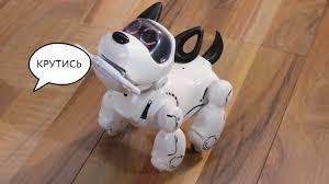 Инструкция <b>собака</b> робот Pupbo на русском языке - YouTube