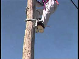 Image result for Lineman Akelco