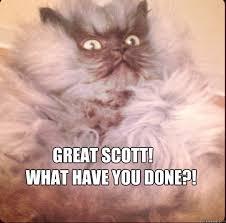 shocked cat memes | quickmeme via Relatably.com