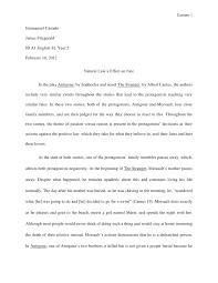 Write ap english essay   University Coursework Writers
