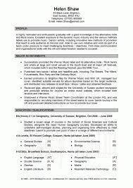 great resume examples best resume objectives examples resume    example of great resume great click resume great summary of qualifications business resume example